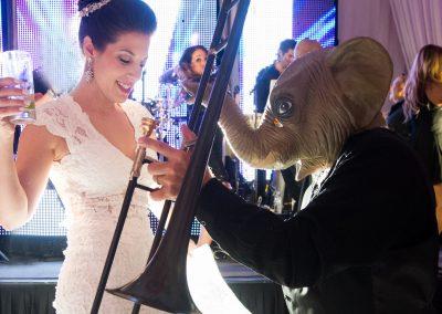 bride_elephant